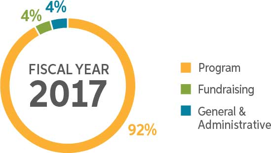 In the fiscal year 2017, 92% of all expenditures went to program services.